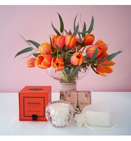 Tulip Posie Fragrance Pack