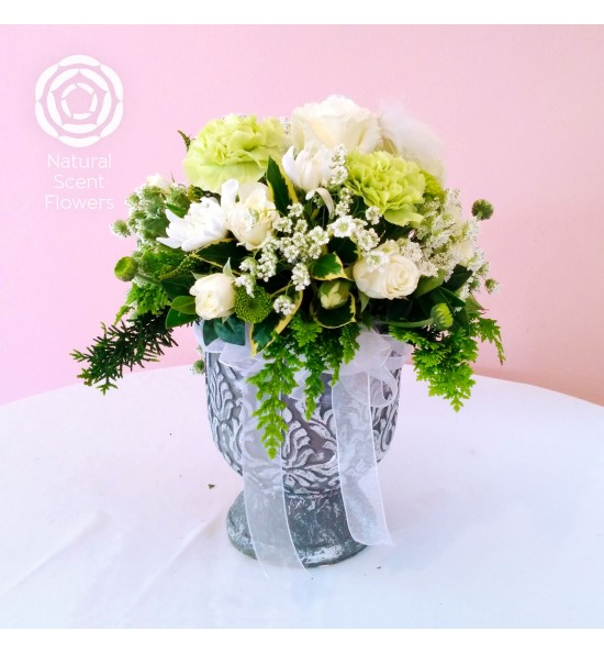 Christmas Flower Arrangements White.Arrangement White And Green In A Lovely Pot Natural Scent Flowers