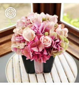 Pink roses and hydrangea in a black pot