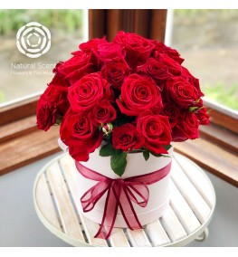 Posy - Large Red Roses